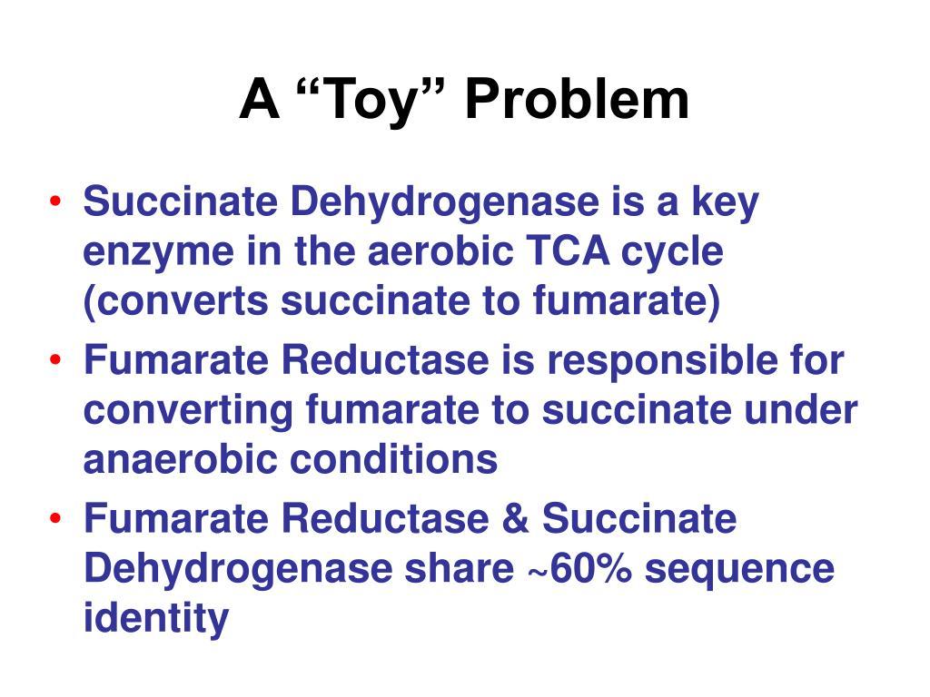 """A """"Toy"""" Problem"""