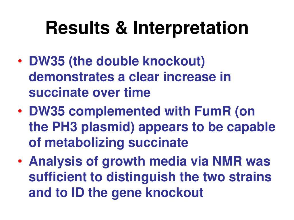 Results & Interpretation