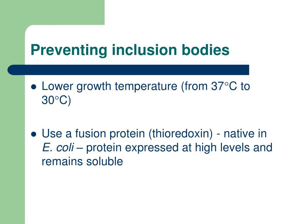 Preventing inclusion bodies