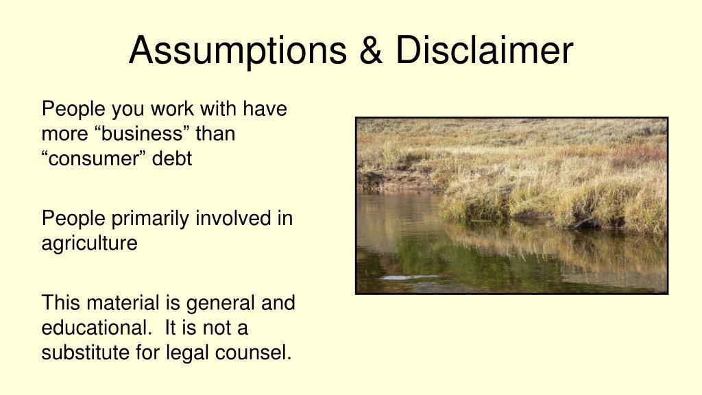 Assumptions & Disclaimer