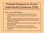 prenatal exposure to alcohol fetal alcohol syndrome fas