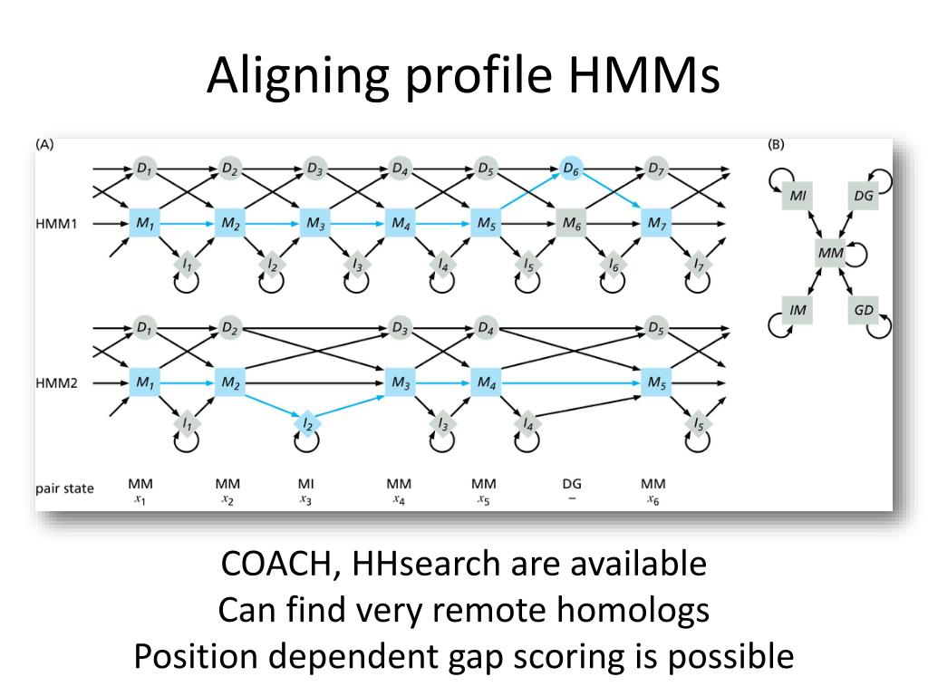 Aligning profile HMMs