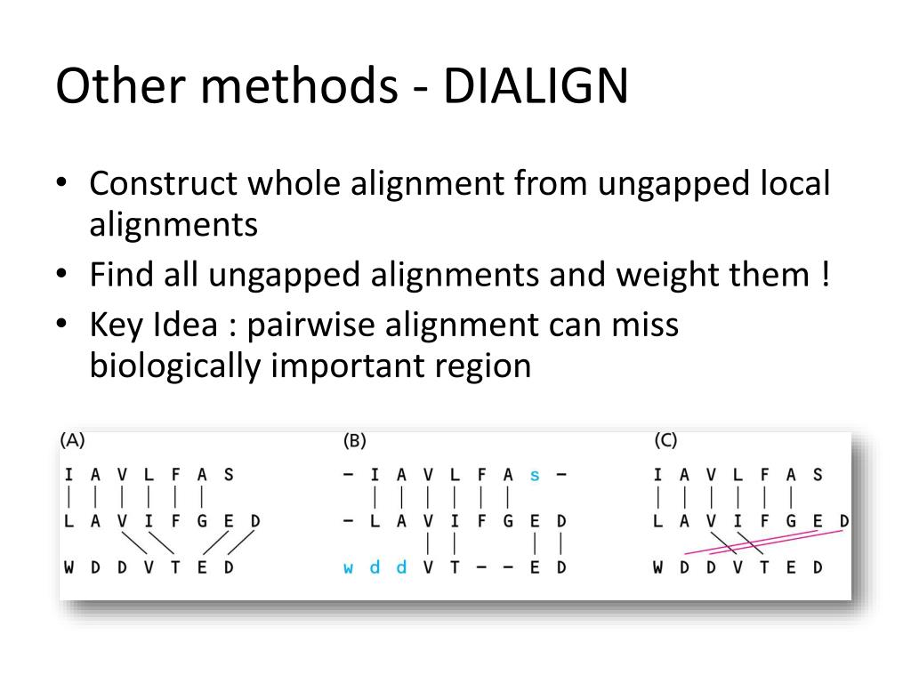 Other methods - DIALIGN