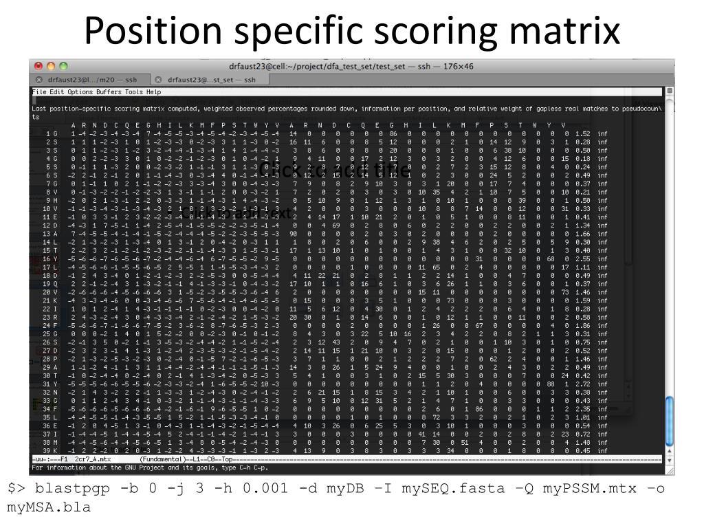 Position specific scoring matrix