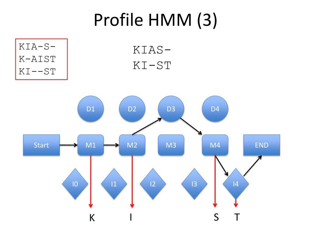 Profile HMM (3)