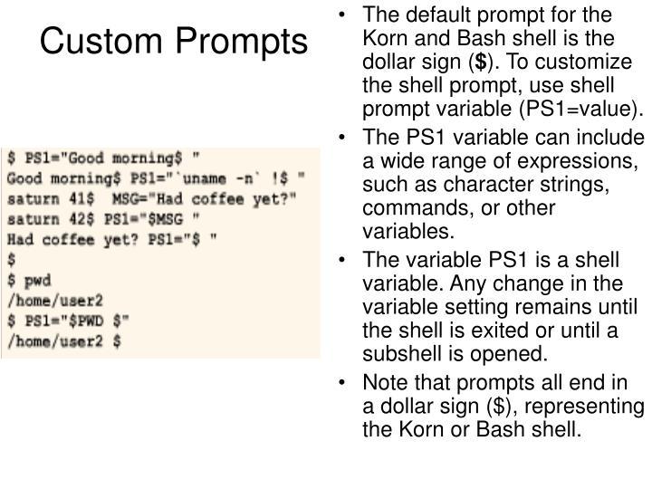 Custom Prompts