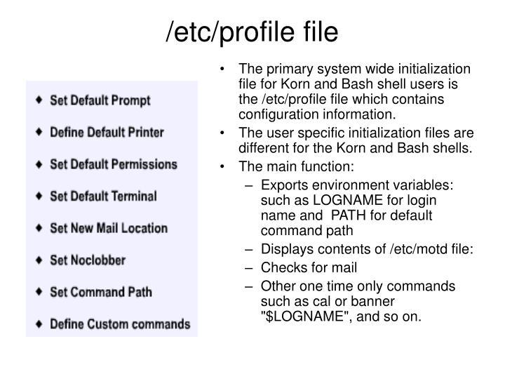 /etc/profile file
