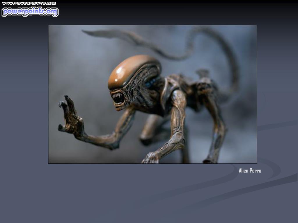 Alien Perro