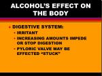 alcohol s effect on the body