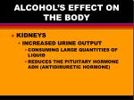 alcohol s effect on the body2