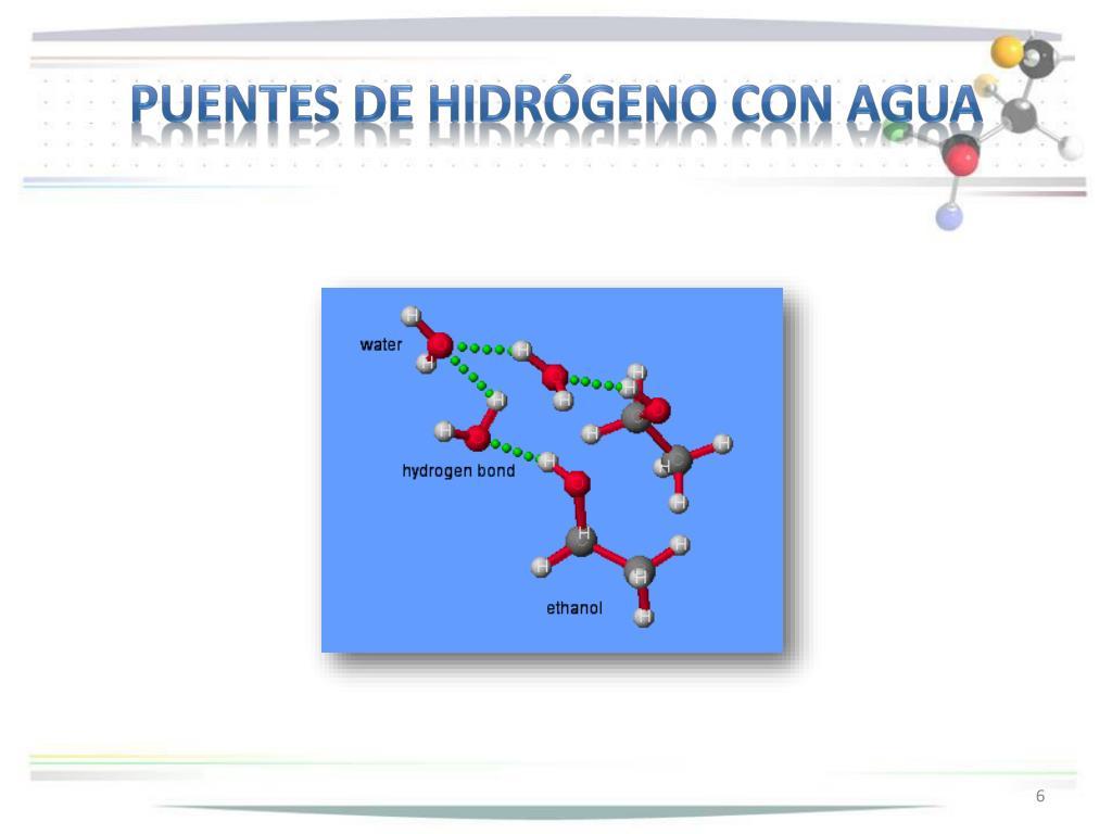 Puentes de hidrógeno con agua