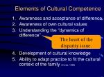 elements of cultural competence