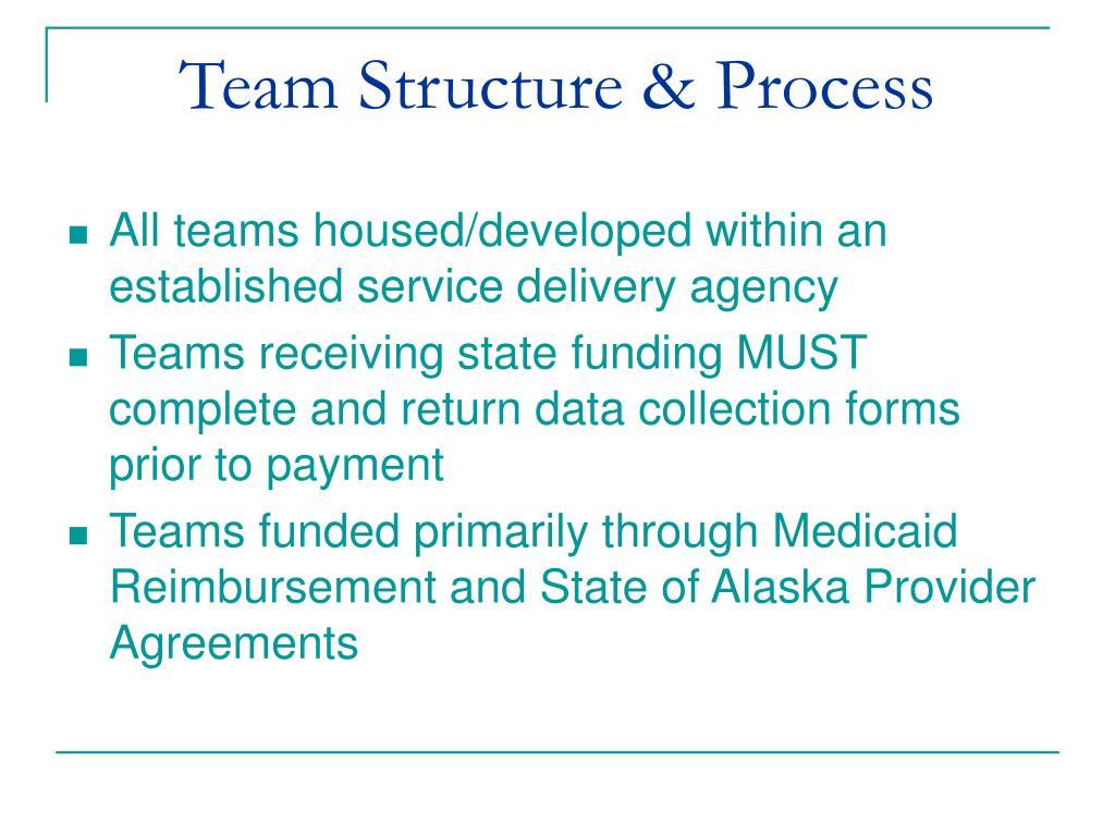 Team Structure & Process