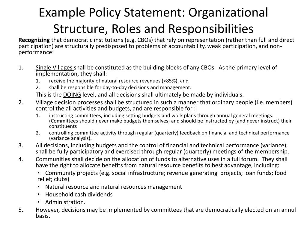 Example Policy Statement: Organizational Structure, Roles and Responsibilities