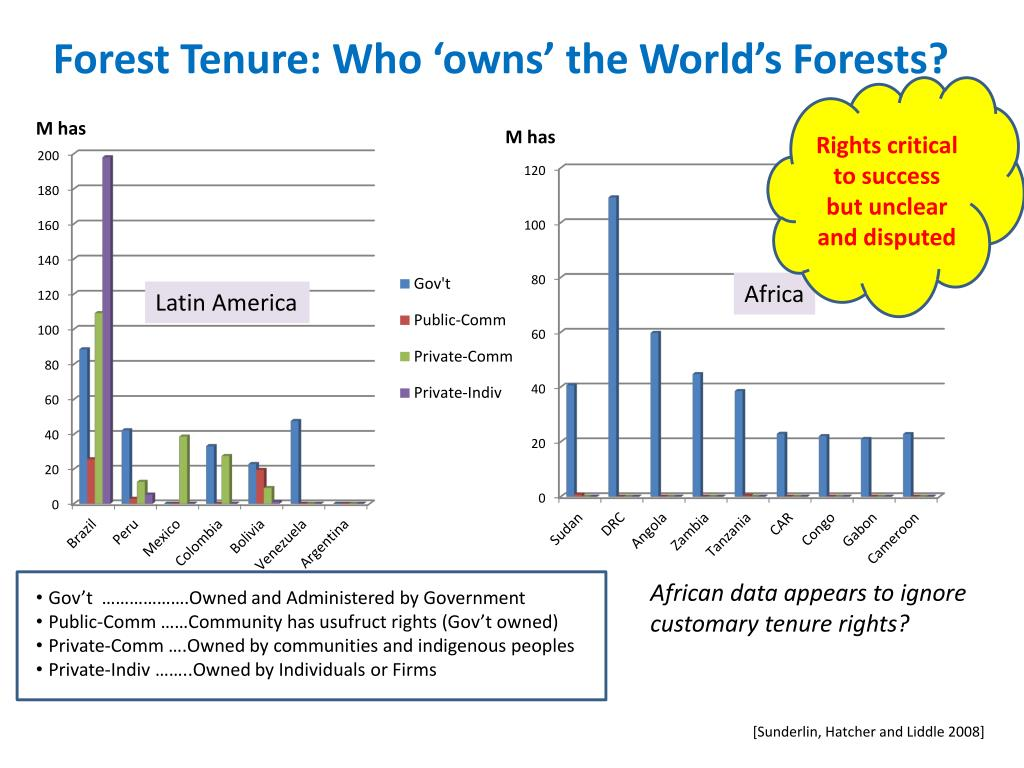 Forest Tenure: Who 'owns' the World's Forests?