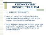 ethnocentric monoculturalism36