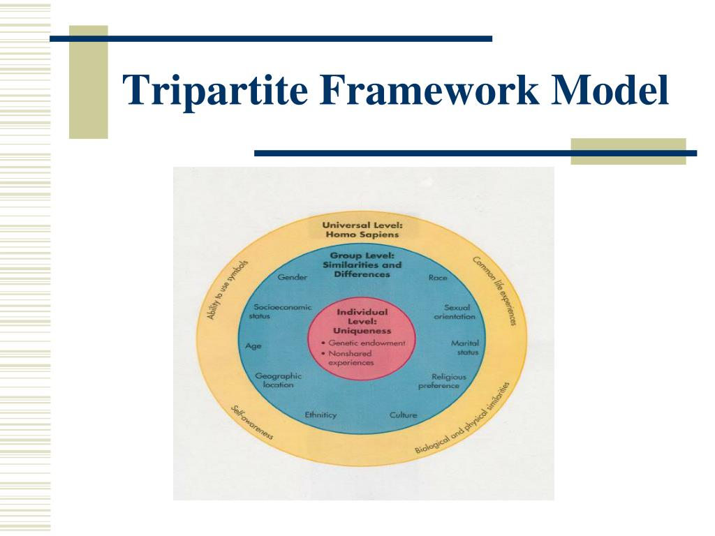 Tripartite Framework Model