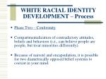 white racial identity development process117