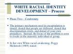 white racial identity development process119