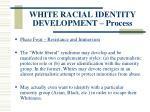 white racial identity development process126