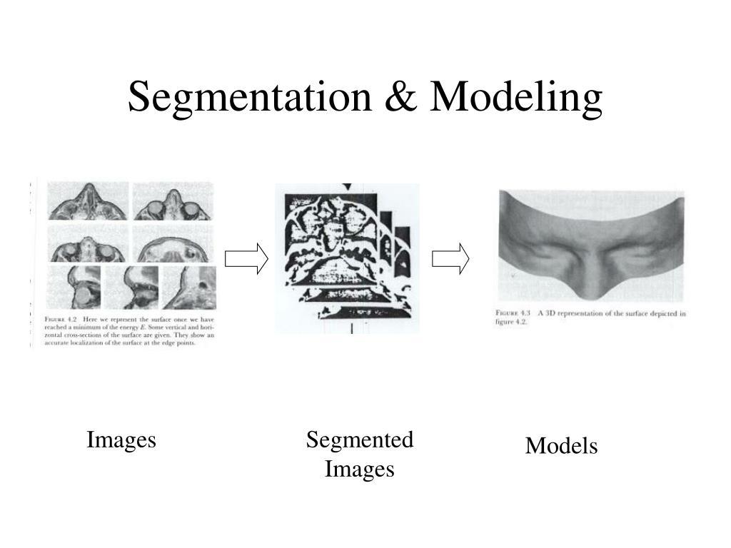 Segmentation & Modeling