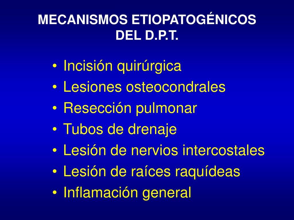 MECANISMOS ETIOPATOGÉNICOS