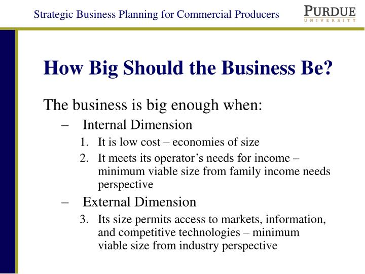 How Big Should the Business Be?