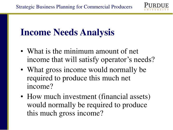 Income Needs Analysis