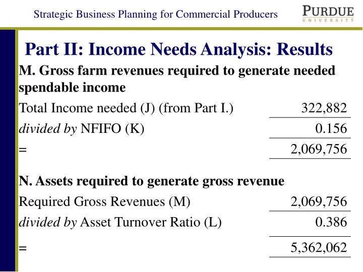 Part II: Income Needs Analysis: Results