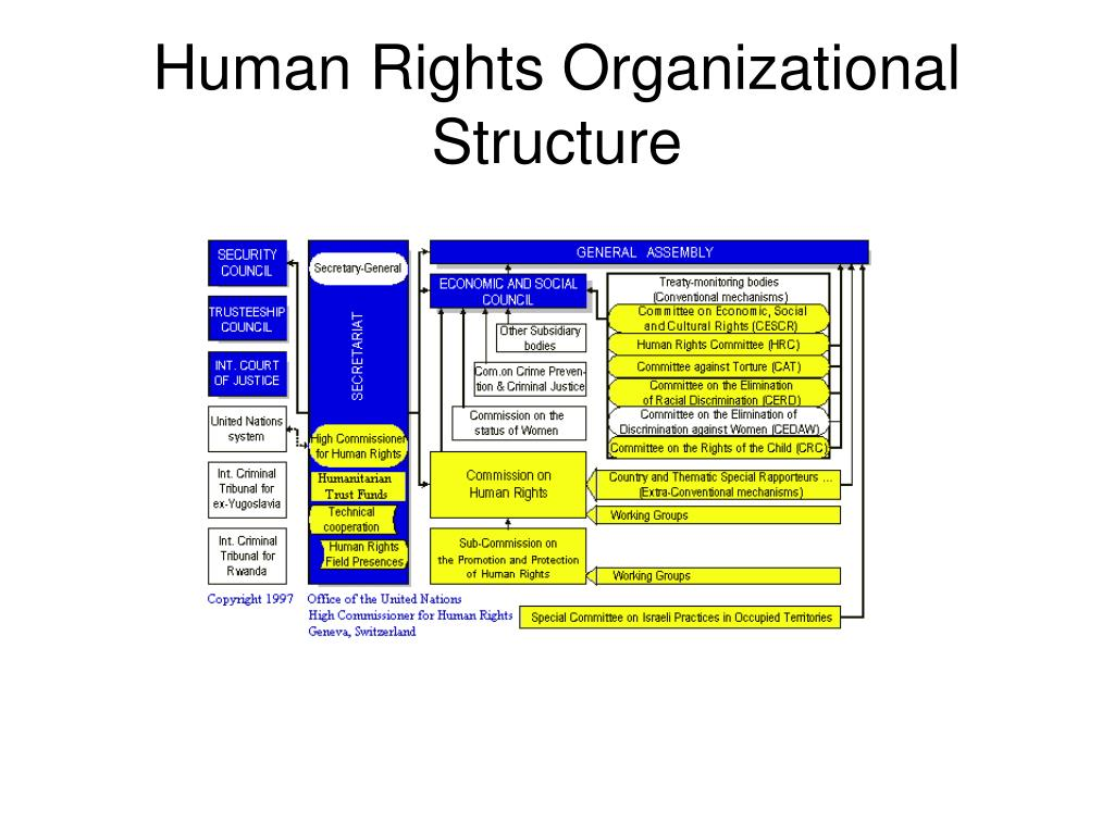 Human Rights Organizational Structure