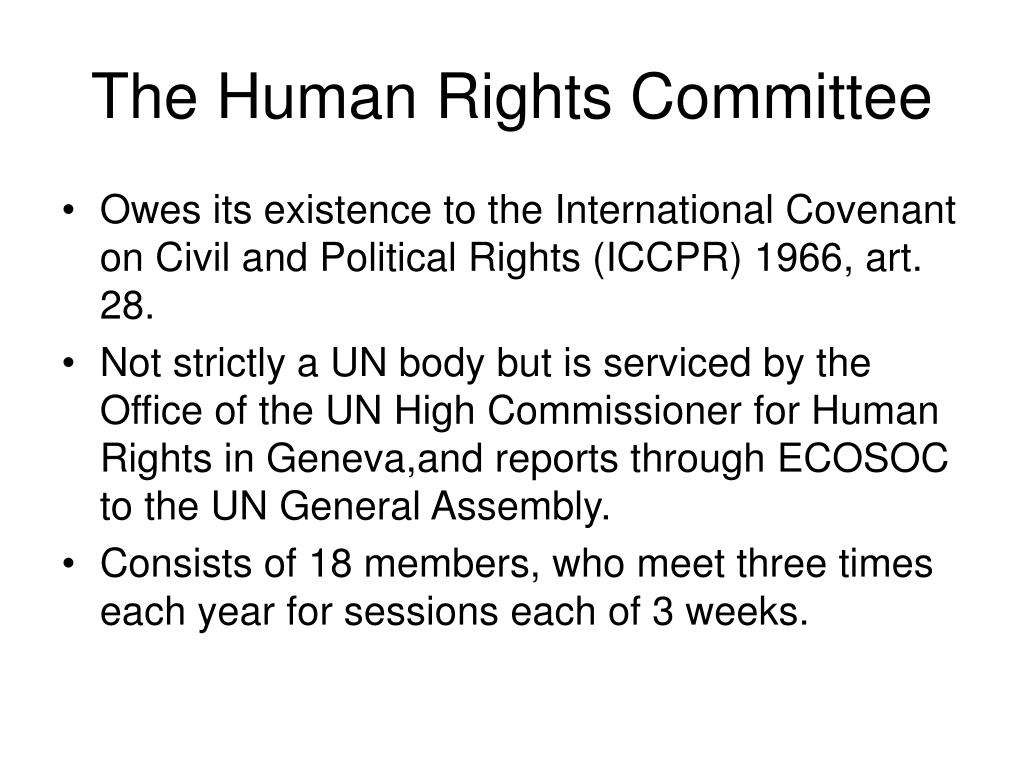 The Human Rights Committee