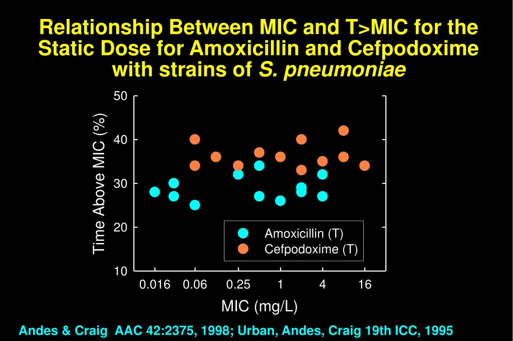 Relationship Between MIC and T>MIC for the Static Dose for Amoxicillin and Cefpodoxime  with strains of
