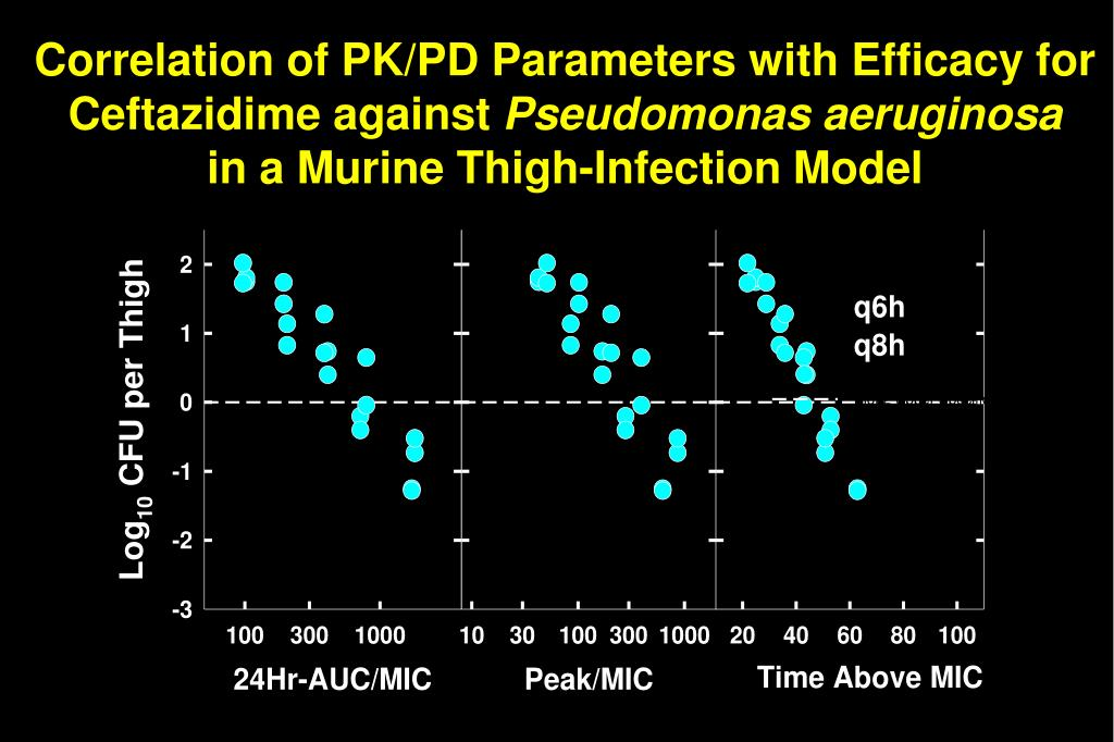 Correlation of PK/PD Parameters with Efficacy for Ceftazidime against