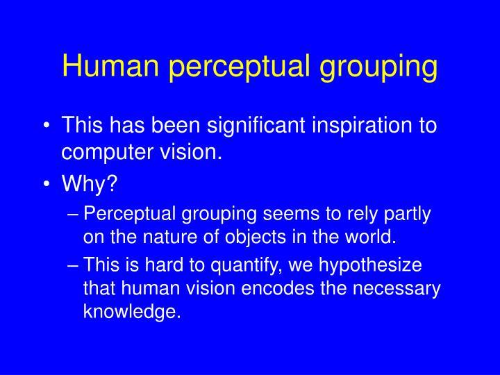 Human perceptual grouping