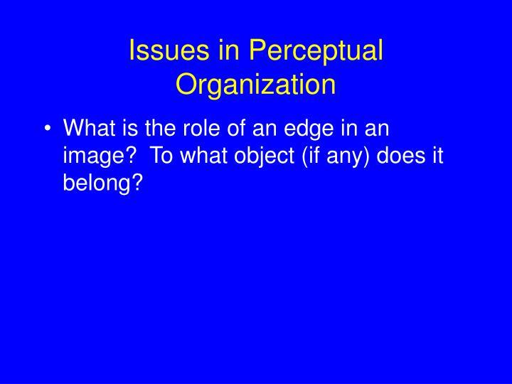 Issues in Perceptual Organization