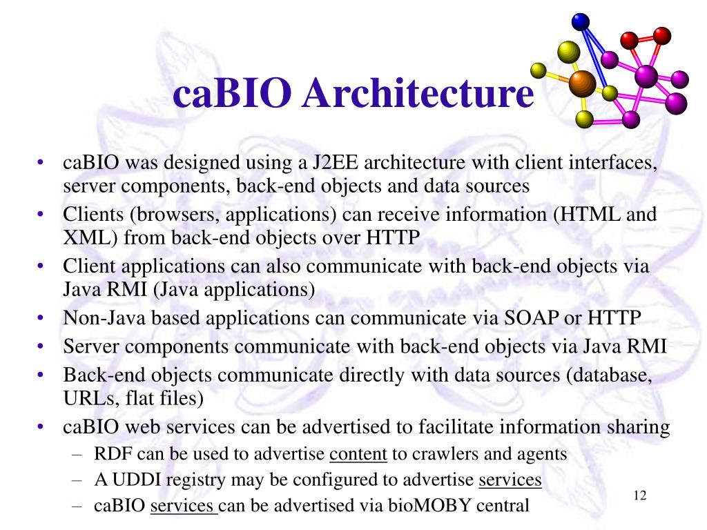 caBIO Architecture