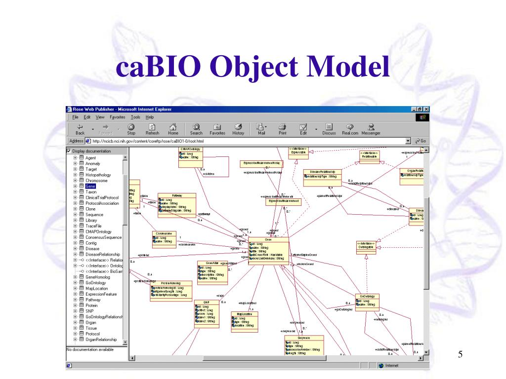 caBIO Object Model