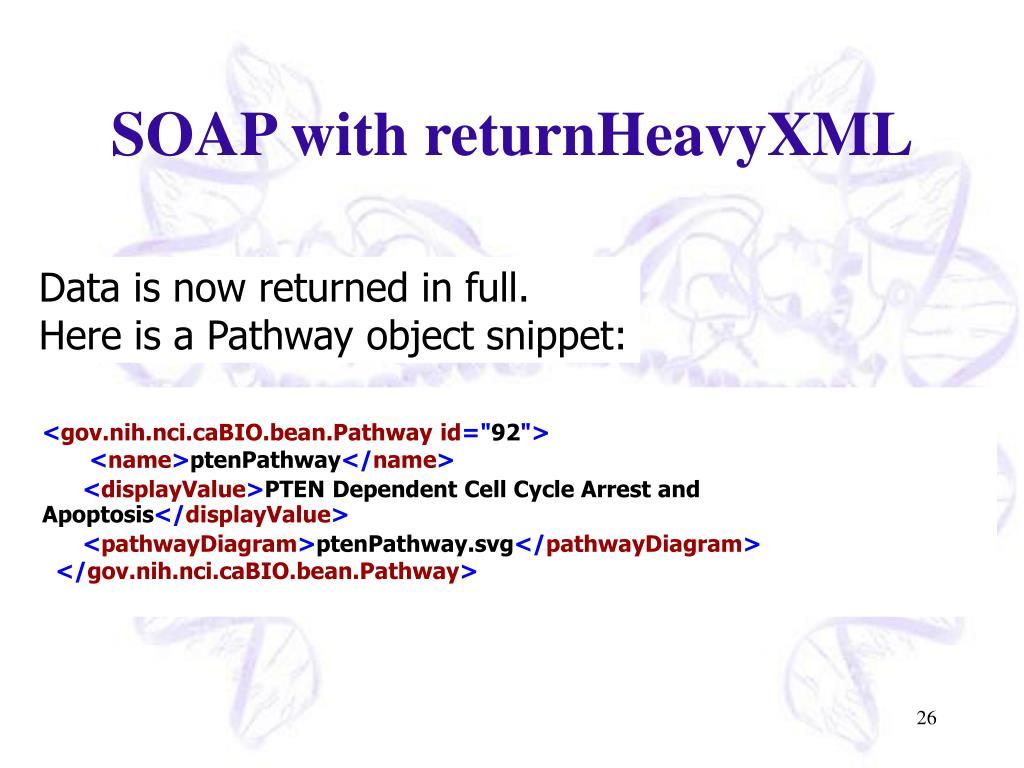 SOAP with returnHeavyXML