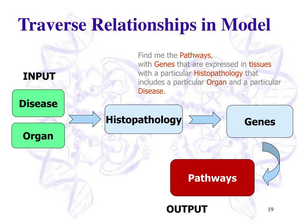 Traverse Relationships in Model