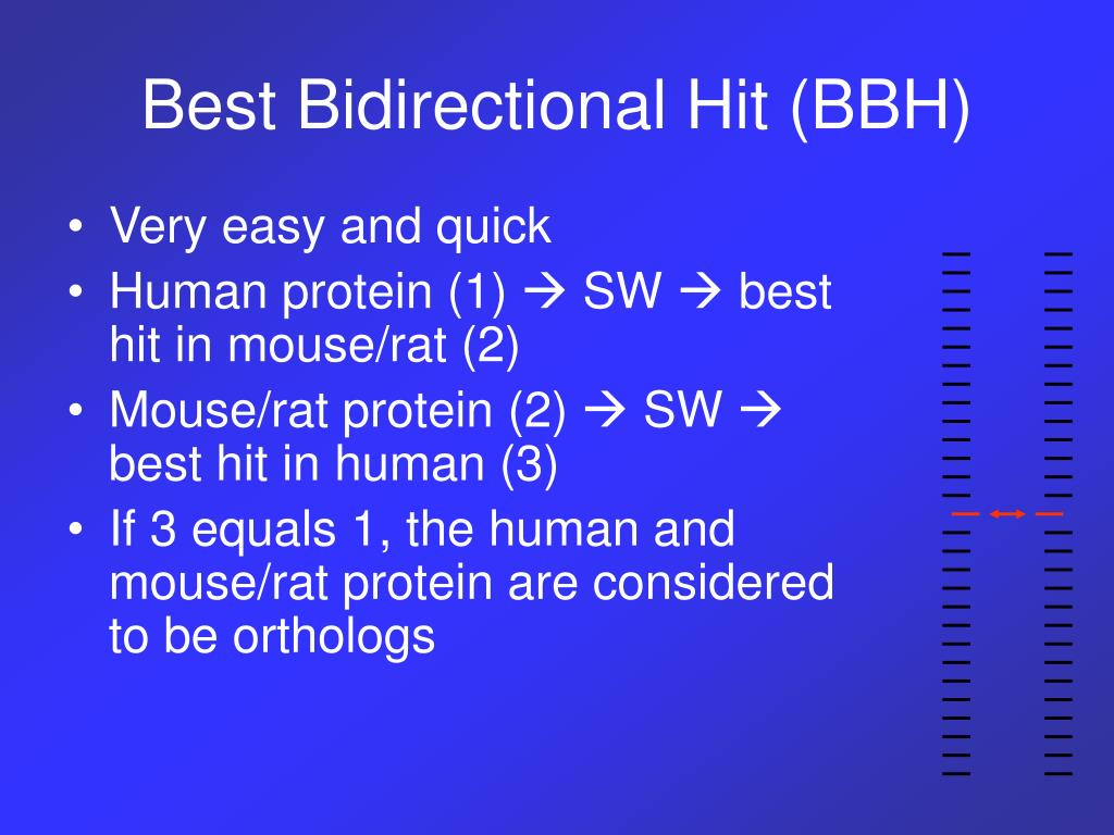 Best Bidirectional Hit (BBH)
