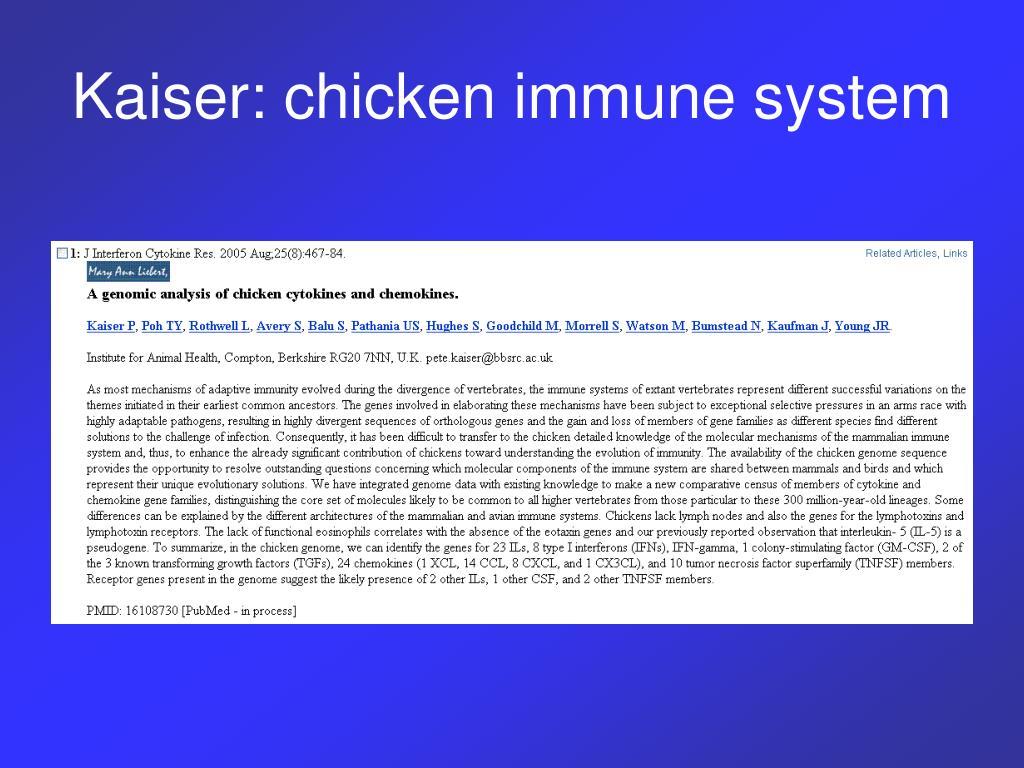 Kaiser: chicken immune system
