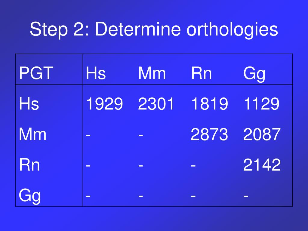 Step 2: Determine orthologies