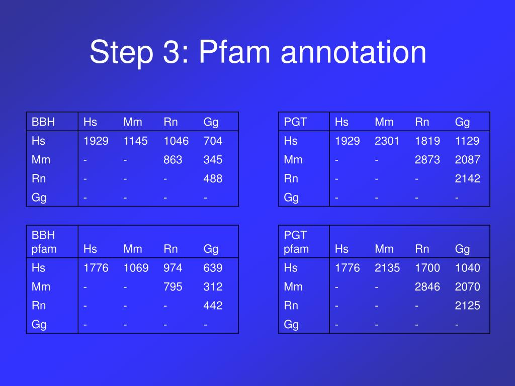 Step 3: Pfam annotation