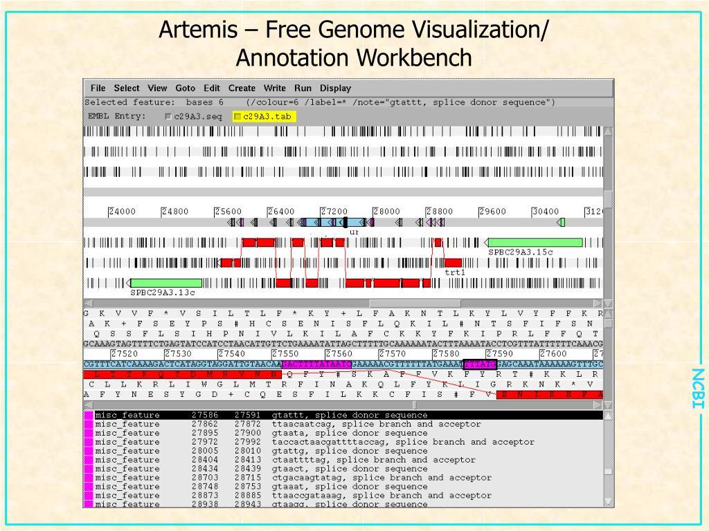 Artemis – Free Genome Visualization/