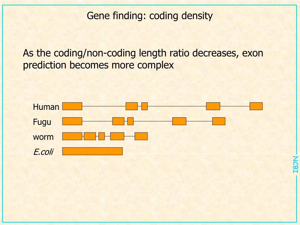 Gene finding: coding density