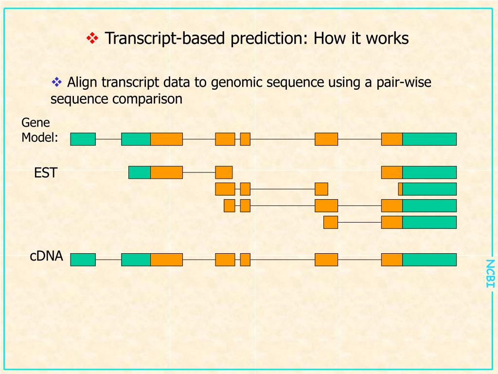 Transcript-based prediction: How it works