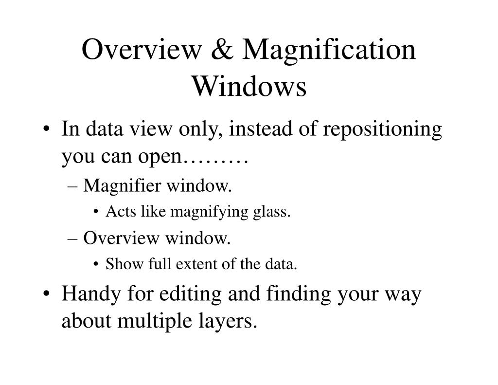 Overview & Magnification Windows