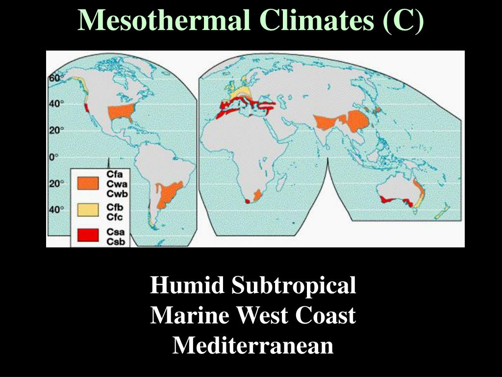 Mesothermal Climates (C)