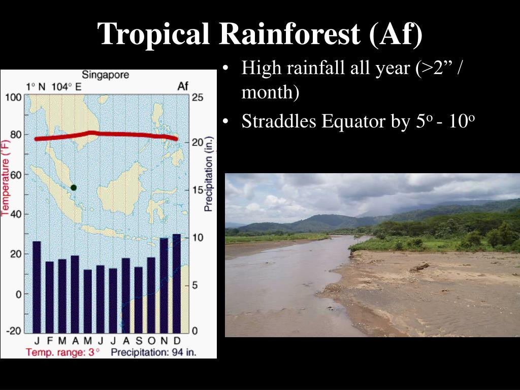 Tropical Rainforest (Af)