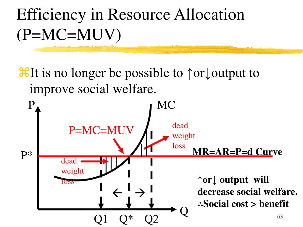 Efficiency in Resource Allocation